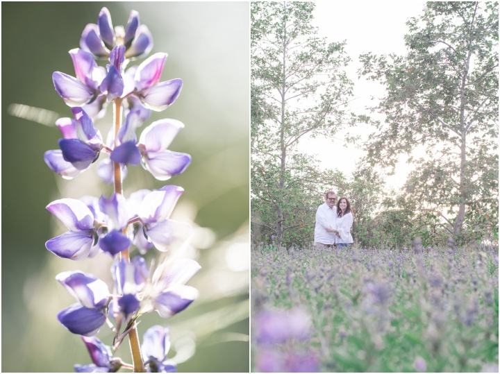 Beverly Hills Engagement at Tree People Park| Valerie &Michael